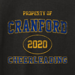 CRANFORD HS CHEER FALL 2020